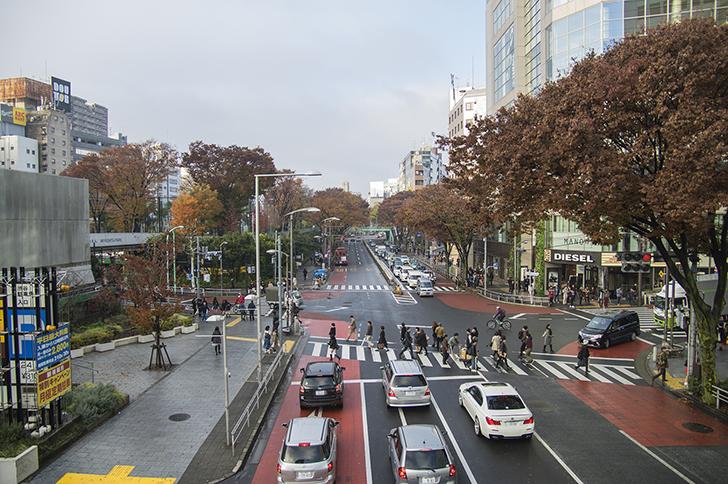 【街歩き】明治通り2-渋谷vs原宿