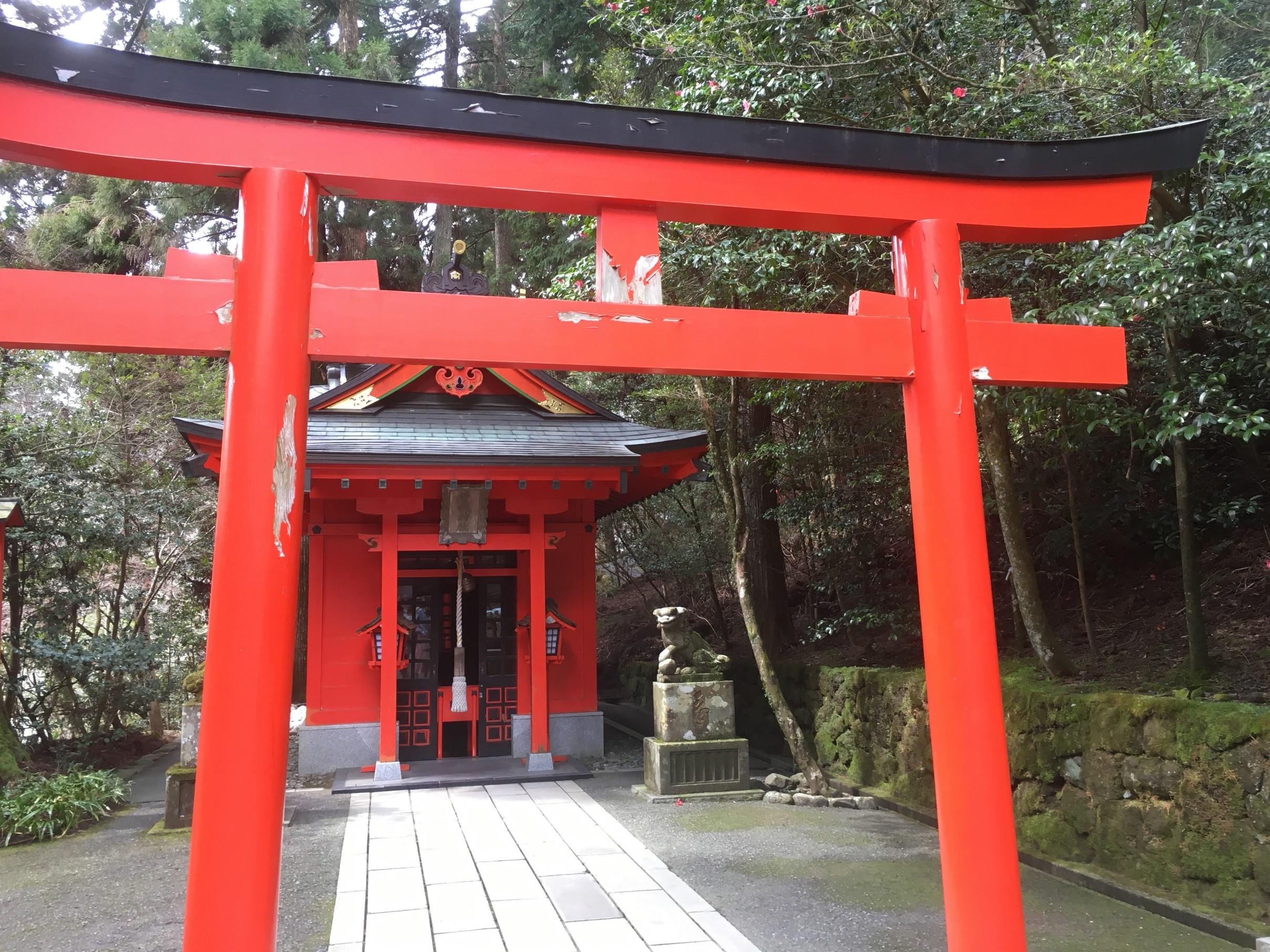 箱根神社 鳥居2 写真