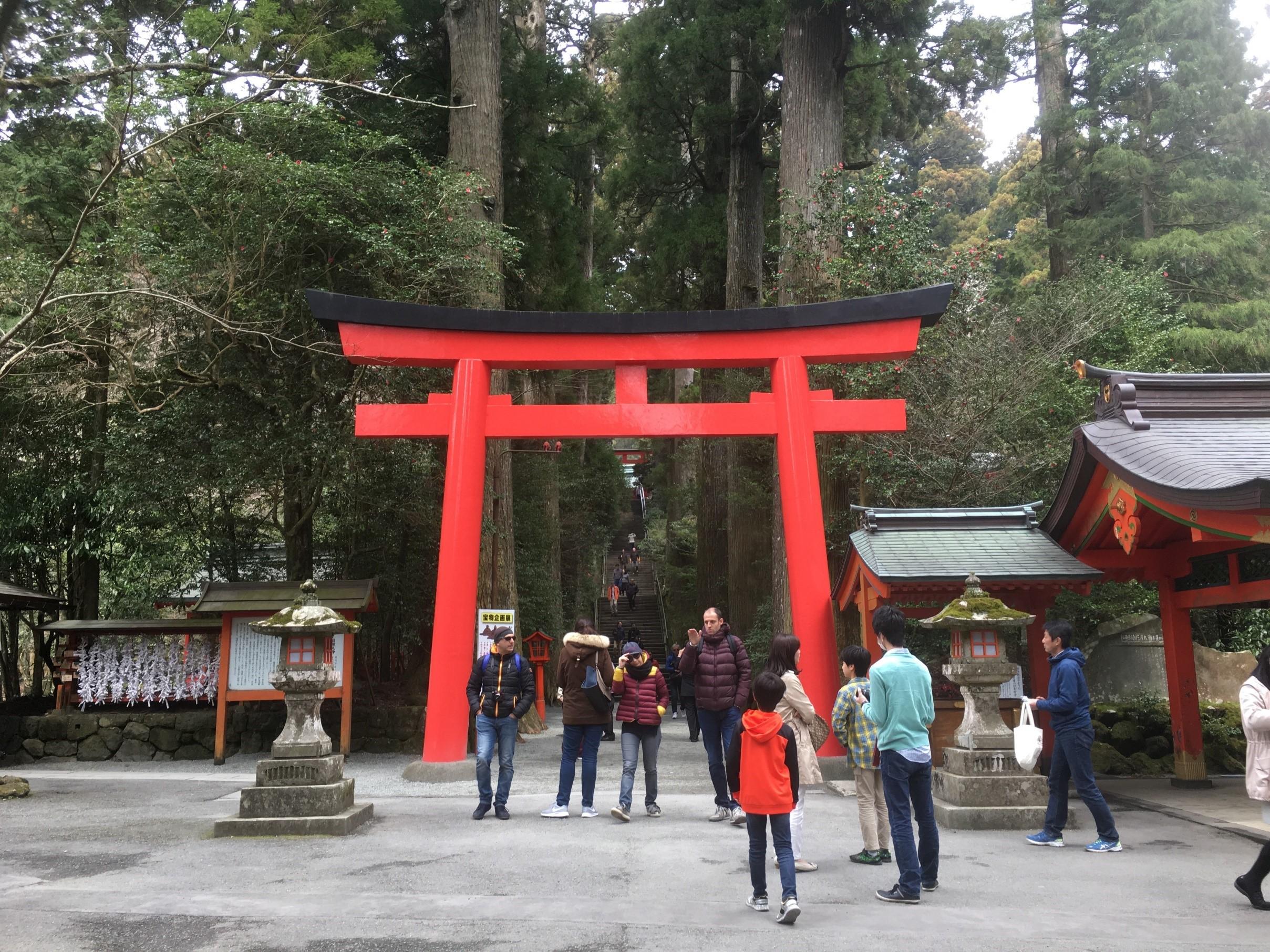 箱根神社 鳥居 写真
