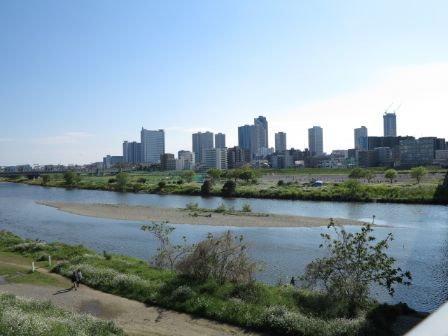 武蔵小杉風景