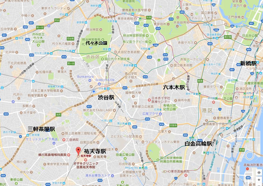 祐天寺地図